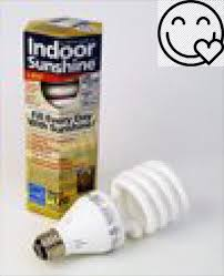 indoor single 3 way 20 23 30 watt spiral bulb