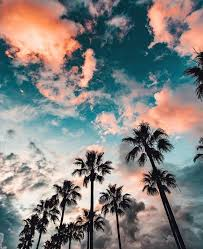 Waking Up To Tie Dye Skies With Palm Trees Soon