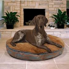 Kirkland Dog Beds by Choosing A Dog Bed