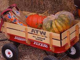 Pumpkin Patches Near Temple Texas by Pumpkin Patches Make Great Escapes Community Kdhnews Com