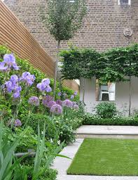 Purple Flowers Give A Signature Colour In Contemporary Garden