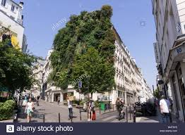 100 L Oasis Iving Wall Paris Vertical Garden Oasis DAboukir Made