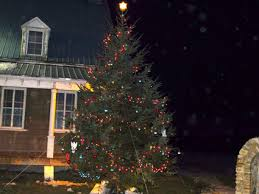 The Christmas Tree All Lit Up Across Street From St Regis Catholic Church Communion Class Students Made Many Of Ornaments