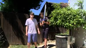 Translate] SMOSH--MY GRANDPA'S DIRTY SECRET (vietsub) (HD) - YouTube Roseville Backyard Landscape Renovation Building A Rain Garden Permaculture Magazine Hardscaping Stone Diamond Lawn Landscapes Solar Suitcase Installation At Casillon Elementary School Please Write Tahitian Words And Translate To English Youtube 232 Best Roof Balcony Images On Pinterest Architecture Backyard Organic Garden Maning Gardenphilippines Stunning In Spanish Phrases And Words Used Costa Rican On Best 25 Google Ideas Wedding Decor Creativelines