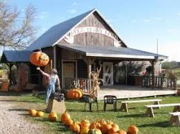 Roca Pumpkin Patch Lincoln by 34 Best Day Activities At Roca Berry Farm Images On Pinterest