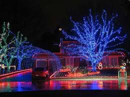 How To Wrap Trees With Outdoor Lights Complex Put On A Tree Outdoors Precious 4