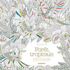 Carnet De Coloriage Forêt Tropicale Amazonfr Millie Marotta Livres