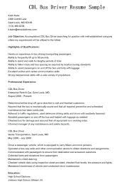 Pizza Delivery Driver Resume Sample Medium To Large Size Of Bus Database Templates