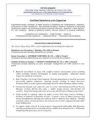 9 Give E An Idea Informatica Etl Developer Sample Resume Effigy