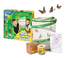 Butterfly Garden with 5 LIVE Caterpillars Live Butterfly Kits