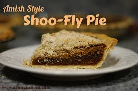 Best Pumpkin Pie With Molasses by Amish Style Shoo Fly Pie A Ranch Mom
