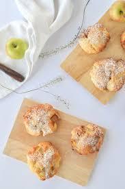 schnelle apfel taler kohlenhydratarme rezepte apfelkuchen