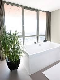 Best Bathroom Pot Plants by Bathroom Ideas Small Modern Bathroom With White Modern Free