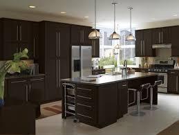 Contemporary Espresso Kitchen Cabinets With Granite