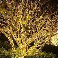 wedding dekorative leuchten garten 300m 3000 leds 8