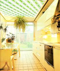 Plant Life In An 80s Kitchen