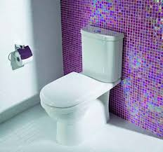 Mansfield Pedestal Sink 270 by Caroma Adelaide Standard High Efficiency Dual Flush Toilet