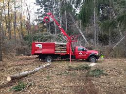 Removal With 60ft Bucket Truck - Tree Services Orange County NY By ... Pmt Donates Bucket Truck To The City Of Paul Forestry Bucket Truck For Sale Youtube Home Trucks Tree Crews Service Kalispell Popular Services Dg Productions Asplundh Bank With Chipper Trucks 75 Foot Forestry Tristate 2008 Ford F750 72 Cat C7 Diesel 60 Camin De Cubo Forestal Freightliner With Liftall Crane Sale