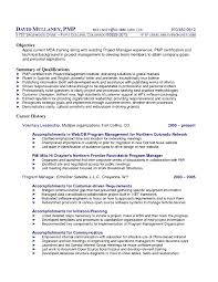Technical Resume Writer Editor Free Samples Entry Rh Nickverstappen Com IT Support Objective