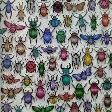 Secret Garden Besouros Jardim Secreto Johanna Basford Coloring BooksAdult
