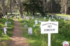 Pet Funeral Services How to Start a Business Helping Pet Owners