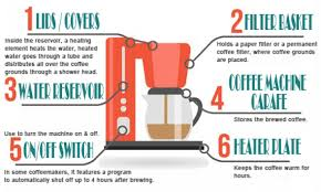 Automatic Drip Coffeemaker Parts Infographic