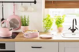 kräuter in der küche anbauen so hast du frische kräuter