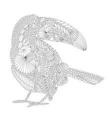 Animal Kingdom Coloring Book Bird Best Images About Animals On