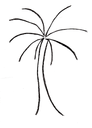 You can create this palm tree drawing in just four easy steps 1 To