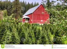 Red Barn And Green Trees. Stock Photography - Image: 31136492 Red Barn Green Roof Blue Sky Stock Photo Image 58492074 What Color Is This Bay Packers Barn Minnesota Prairie Roots Pfun Tx Long Bigstock With Tin Photos A Stately Mikki Senkarik At Outlook Farm Wedding Maine Boston 1097 Best Old Barns Images On Pinterest Country Barns Photograph The Palouse Or Anywhere Really Tips From Pros Vermont Weddings 37654909