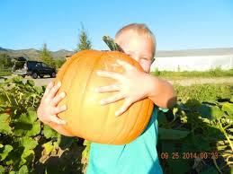 Colorado Springs Pumpkin Patch 2017 by Oct 1 31 Pumpkin Patch At Osage Gardens Mountain Parent