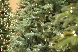 5ft Pre Lit Christmas Tree Homebase by Pre Lit Frasier Fir Christmas Trees Christmas Lights Decoration