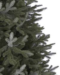 Slim Pre Lit Christmas Tree Canada by Full Width Fraser Fir Artificial Christmas Trees Balsam Hill
