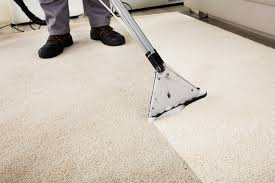 Carpet Cleaning Wellington - Best Carpet Cleaners In Wellington