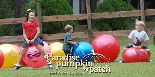 Pumpkin Patch Columbus Ga by Paradise Pumpkin Patch Home Paradise Pumpkin Patch