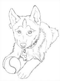 Realistic Husky Coloring Pages 21