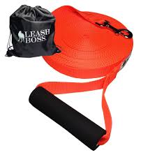 Amazon.com : Leashboss Free Range - 50 Foot - 1 Inch Nylon Dog ... Do Female Dogs Get Periods How Often And Long Does The Period Dsc3763jpg The Best Retractable Dog Leash In 2017 Top 5 Leashes Compared Please Fence Me In Westward Ho To Seattle Traing Talk Teaching Your Come When Called Steemit For Outside December Pet Collars Chains At Ace Hdware Biglarge Reviews Buyers Guide Amazoncom 10 Foot With Padded Handle For Itt A Long Term Version Of I Found A Rabbit Wat Do