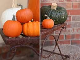 Lumpkin The Pumpkin Book by Pumpkin Lumpkin Jessica Risinger U0027s Blog