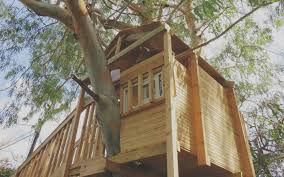 Budget To Build A Backyard Treehouse   Simple Our Work Tree Houses By Dave Modern Treehouse Designed As A Weekender In The Backyard For 9 Completely Free House Plans Funky Video Hgtv Cool Designs We Wish Had In Our Photos Steal This Look A Fort Gardenista Child Within Max Backyard Treehouse Scene Tree Incredible Treehouses You As Kid The Design Dome 25 Ideas Youtube