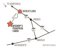 Bishop Pumpkin Patch Lincoln Ca by 11 Bishops Pumpkin Farm Wheatland California Pumpkin Bishop