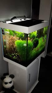 pompe a chaleur aquarium comment baisser la température de aquarium durant l été