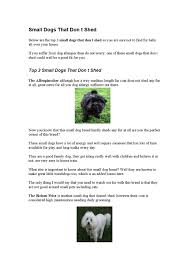 Dogs That Dont Shed A Lot by Small Dogs That Don T Shed 3 By Dogsbreeds Issuu