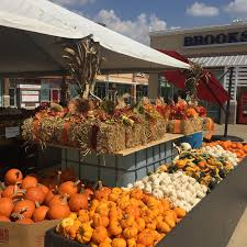Rombachs Pumpkin Patch Hours by Fall Attractions Boone U0027s Crossing Farm Market Boone U0027s Crossing