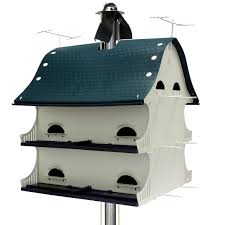 Purple Martin House Birdhouse For Outside Backyard Large Barn ... Backyard Birdhouse Youtube Free Images Insect Backyard Garden Inverbrate Woodland Amazoncom Boys Woodworking Bbw81 Cardinal Nest Box Bird House Decorative Little Wren Haing Yard Envy Table Lawn Home Green Lighting Wooden Modern Take On A Stuff We Love Pinterest Shop Glory 8125in W X 85in H 8in D White Discovery Channel Birdhouse Wooden Nesting Baby Birds In My Bird House How To Make Spring Diy Craft For Kids Couponscom