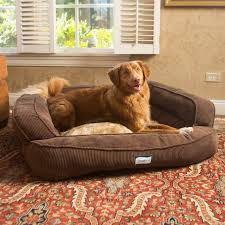 Extra Large Orthopedic Dog Bed by Extra Large Dog Pillows Perplexcitysentinel Com