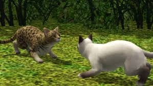 warrior cat sims 3 warrior cats legacy challenge library tea time