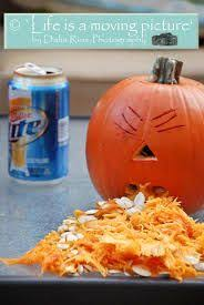 Pumpkin Guacamole Throw Up Buzzfeed by 24 Best Pumkin Carves Images On Pinterest Halloween Prop Puking