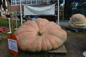 Pumpkin Patch Near Des Moines Iowa by Saving The Family Farm At The Iowa State Fair U2013 Homegrown Iowan