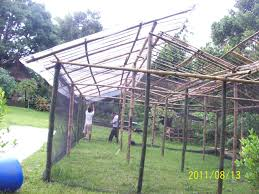 Backyard Greenhouse Ideas | Mystical Designs And Tags Backyard Greenhouse Ideas Greenhouse Ideas Decoration Home The Traditional Incporated With Pergola Hammock Plans How To Build A Diy Hobby Detailed Large Backyard Looks Great With White Glass Idea For Best 25 On Pinterest Small Garden 23 Wonderful Best Kits Garden Shed Inhabitat Green Design Innovation Architecture Unbelievable 50 Grow Weed Easy Backyards Appealing Greenhouses Amys 94 1500 Leanto Series 515 Width Sunglo