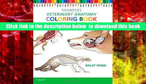 Download Veterinary Anatomy Coloring Book 2e SAUNDERS Full